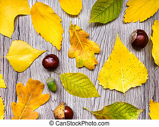Bright autumn composition with leaves on wooden background. Top view, flat lay, view from above