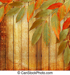 Bright autumn leaves on the wooden background