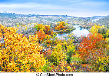 Bright autumn trees on the bank of stream