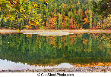 Bright autumn trees with reflection in water