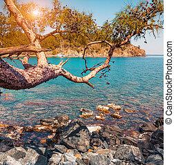 Bright azure seascape in the small bay near Tekirova village