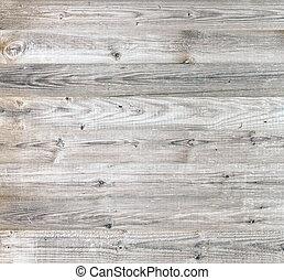 Bright beauty wood