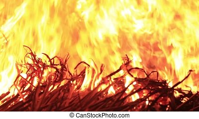 Bright burning of dry grass, festival and holiday