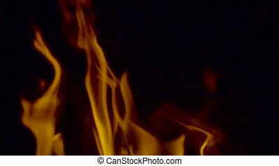 Bright burning wood at slowmotion