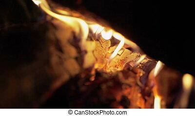 Bright burning wood, campfire macro