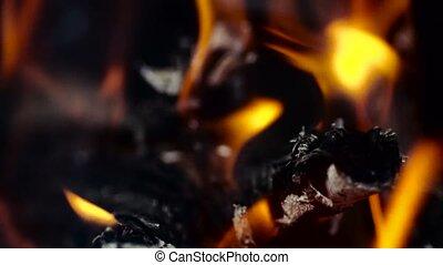 Bright burning wood, campfire macro video. slow motion