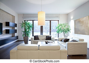 Bright cozy apartment with stylish sofas