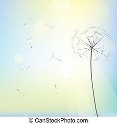 Bright dandelion design