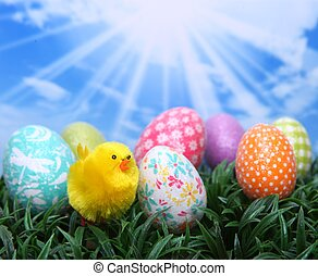 Bright Easter Spring Eggs in the Grass