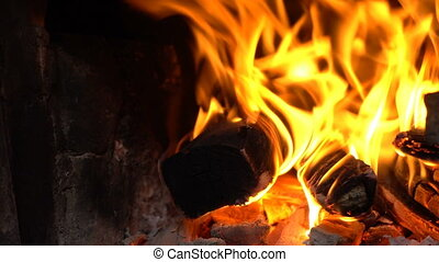 bright flame of a bonfire. include Crackle of firewood noise