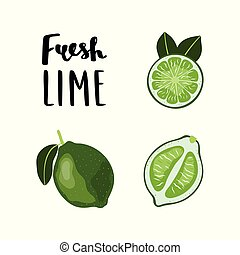 Bright, flat style Lime Fruit illustration with lettering.