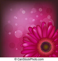 Bright Flowers - Bright Gerbera On Crimson Background From...