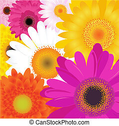 Bright Flowers, Isolated On White Background, Vector...