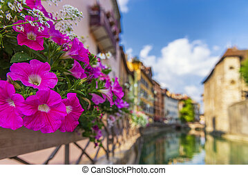 Bright flowers on the streets of Annecy, France.