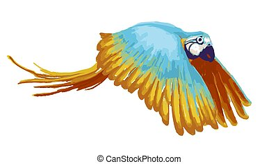 Bright flying parrot, cartoon animal on white