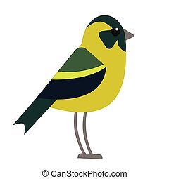 bright forest bird flat illustration