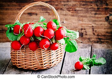 bright fresh organic radishes with leaves