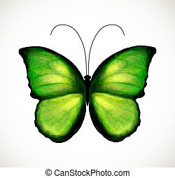 Bright green butterfly. Vector
