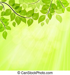 Bright green summer vector background with tree leaves.