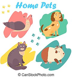 Bright images of domestic animals cat, snail dog and guinea. Can be used for pet shops, clinics, pet food advertising.