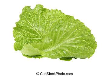 bright lettuce leaf isolated on white background