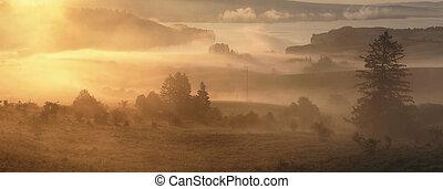 Bright misty sunny morning