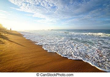 Bright morning on ocean - Bright morning on a sandy beach of...