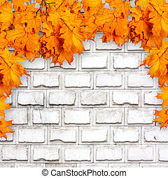 Bright orange autumn leaves on the background of an old brick wa