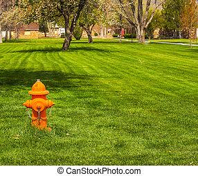 Orange Fire Hydrant In Grass