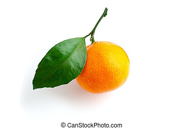 Bright, orange mandarin with green leaves, lit from the right, side view.