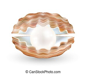 bright pearl in a opened sea shell