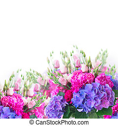 Bright pink and blue flowers