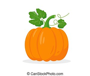 Bright pumpkin with leaves on white background.