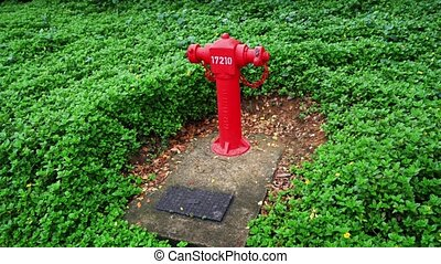 Bright Red Fire Hydrant in Singapore Park. - Numbered fire...