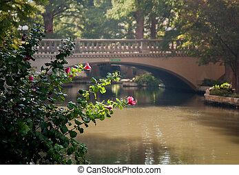 Bright red flowers in front of bridge in San Antonio