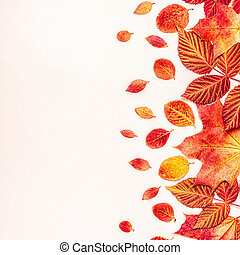 Bright, red leaves on a pastel background