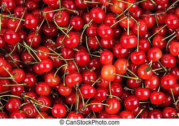 fresh gathered cherries background - bright red ripe fresh...