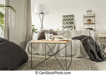 Bright room with sofa