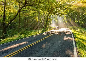 Bright Shafts of Light Around the Corner