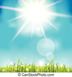 Bright summer midday. Holiday sunshine background.