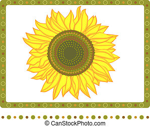 Bright sunflower with 2 borders - Vector illustration of...