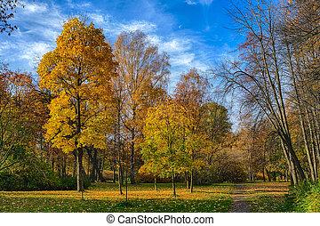 bright sunny landscape