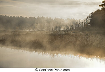 Bright sunrise on a marsh. Cool air causes foggy mist on a late-summer morning at the narrow end of a small lake.