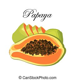 Bright tropical fruit - papaya, whole or half of a sectional with seeds on a white background. Vector illustration