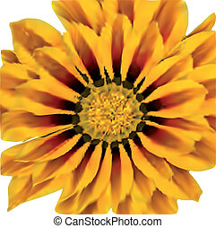 Bright Yellow Sunflower. Vector