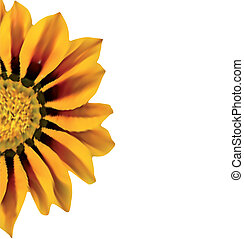 Bright Yellow Sunflower. Vector illustration