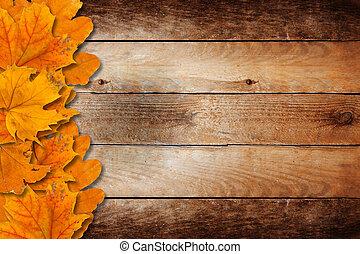 brillante, caído, otoño sale, en, un, de madera, plano de...