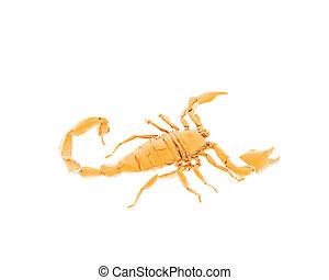 brillante, escorpión, blanco, isolted, 3d