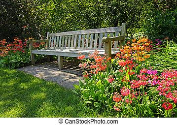 brillante, flores, banco de madera, florecer