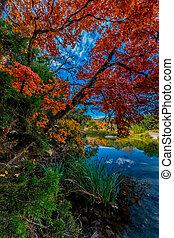brillante, follaje, tejas, otoño